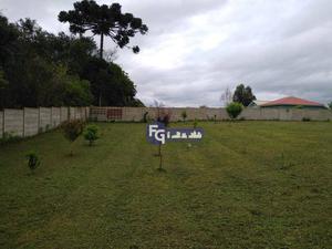 Chácara no Bairro Rio Pequeno em São José dos Pinhais à venda, 4450 m² por R$ 450.000