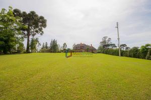 Chácara com 4 dormitórios à venda, 7555 m² por R$ 2.400.000 - Jardim Karla - Pinhais/PR