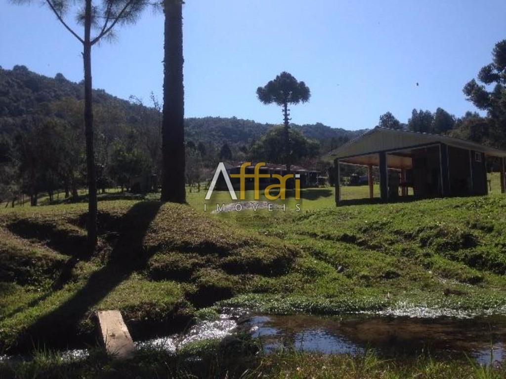 FAZENDA para Venda Entre Bocaiuva do Sul e Tunas do Paraná, Curitiba!